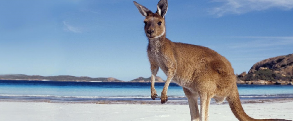 H Kϊνα 'κατακτά' την Αυστραλία