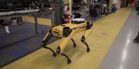 Σκυλίσια ρομπότ