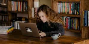 Τέσσερα μαθήματα δημοκρατίας και κυβερνοασφάλειας με αφορμή ένα απλό skype poll μαθητών Δημοτικού
