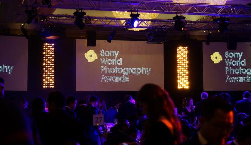 Οι φωτογραφίες των φιναλίστ του διαγωνισμού SWPA 2018 που ξεχωρίσαμε