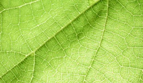'Πράσινο' κέντρο δεδομένων από το ΕΔΕΤ και τη ΔΕΗ